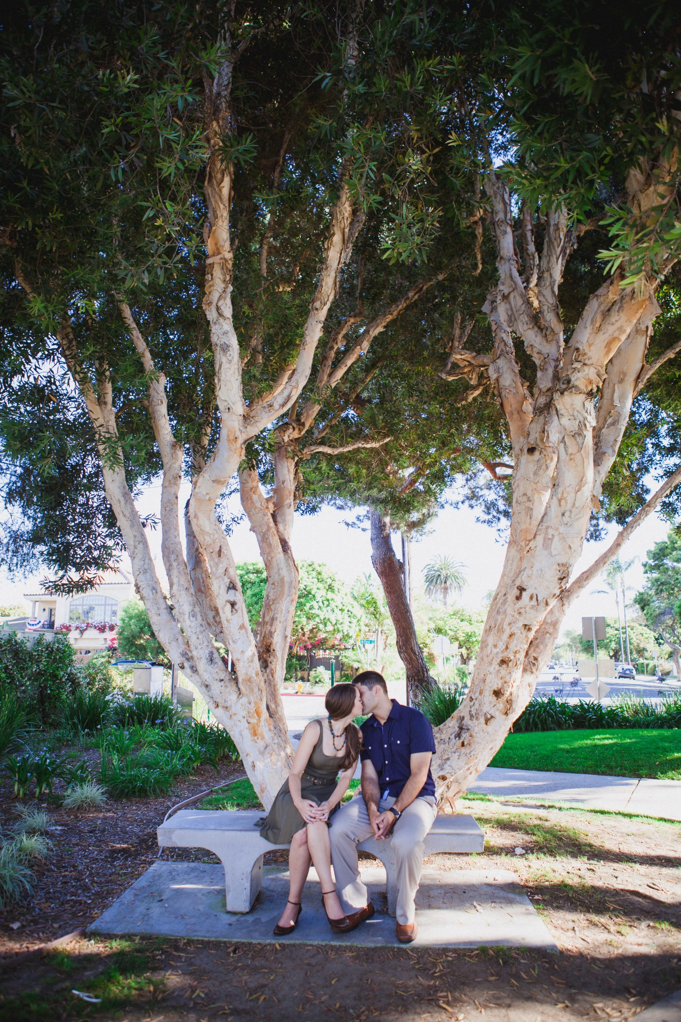 Couple sitting under a tree in Coronado and kissing